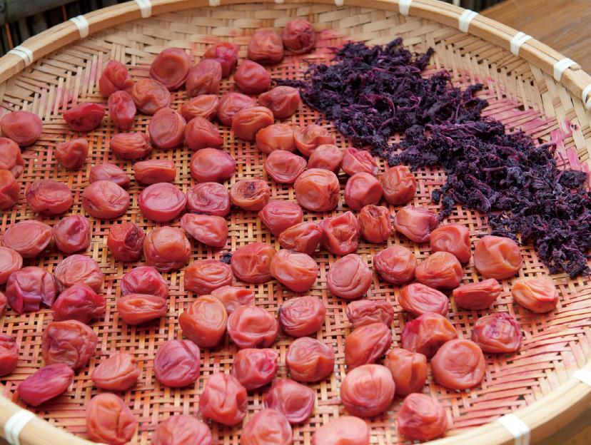 【夏】おいしい梅干の作り方